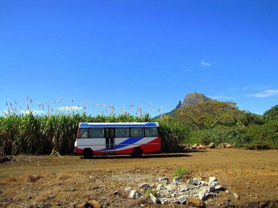 """Bus Stop (Bambous) """"A SAFE PLACE"""" series Canvas Print"""