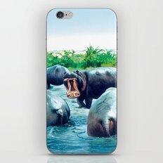 hippos iPhone & iPod Skin