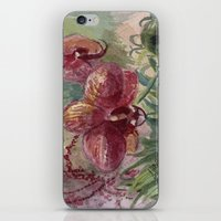 Orchid Passion iPhone & iPod Skin