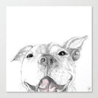Whaddup :: A Pit Bull Sm… Canvas Print