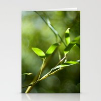 Bamboo Shadows Stationery Cards