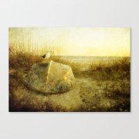 A Seagulls Tail Canvas Print