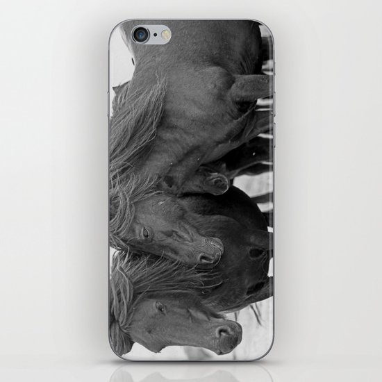 PONIES IN THE WIND iPhone & iPod Skin