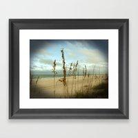Morning sea oats Framed Art Print