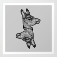 Antelope Heads Art Print