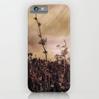 iPhone & iPod Case featuring Last flowers of autumn by DS' photoart
