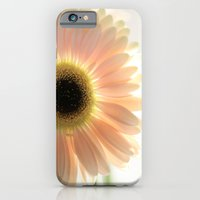 Salmon Gerbera iPhone 6 Slim Case