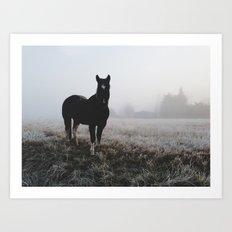 Frosty Klamath Horse Art Print