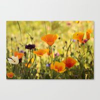 Summer Garden - JUSTART © Canvas Print