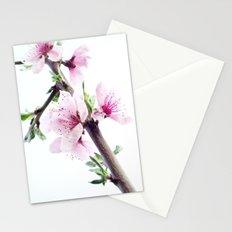 Spring 1 Stationery Cards