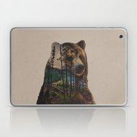 Bear Lake Laptop & iPad Skin