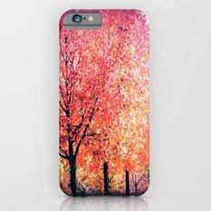 Autumn Tree iPhone 6 Slim Case