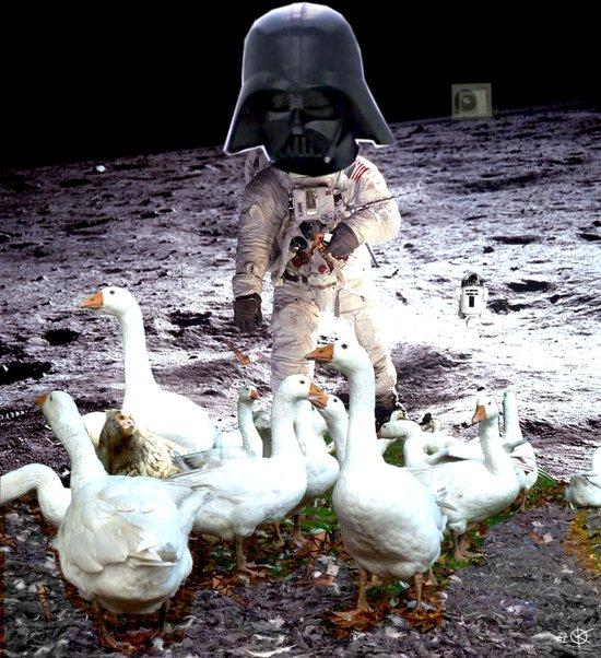 Goats Peter guards goose on the moon... Art Print