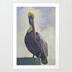 Water Way Pelican Art Print