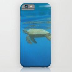 Hawaiian Green Sea Turtle iPhone 6s Slim Case