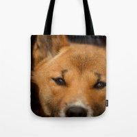New Guinea Singing Dog Tote Bag