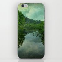 Wetland iPhone & iPod Skin