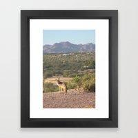 Posing for Animal Crackers Framed Art Print