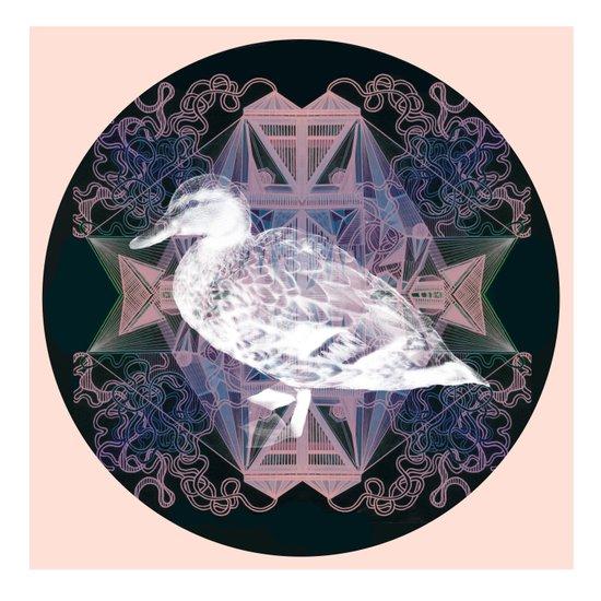 Le canard Art Print