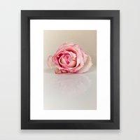 Hot Pink Rose Framed Art Print
