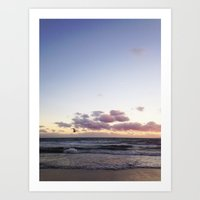 Sunset And Seagull Art Print