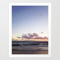 Sunset And Seagull Art Print