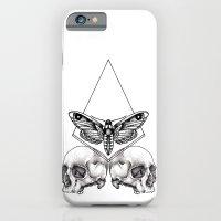 Skull Moth iPhone 6 Slim Case