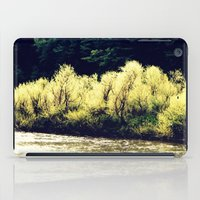Sun-Kissed Muddy Water iPad Case