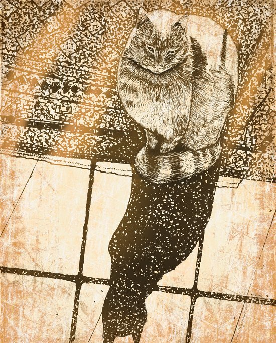 Window Cat Art Print
