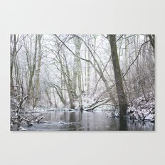 Winter forest... with a little red-hair cat:) Canvas Print