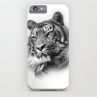 iPhone & iPod Case featuring Tiger 2 by Stephie Butler Photography