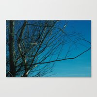 Canvas Print featuring The Norwegian Trees by Elise Tyv