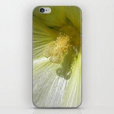 white hollyhock iPhone & iPod Skin