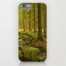 A Fairytale Forest III iPhone 6 Slim Case