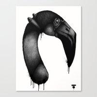 Flamingo_Face Canvas Print
