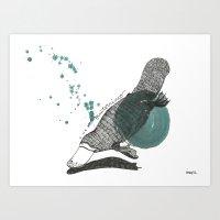 Platypus Art Print