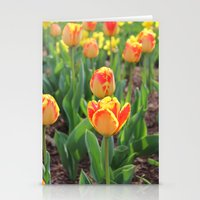 First Sign Of Spring Stationery Cards