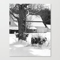 The Beginning Of Maple S… Canvas Print