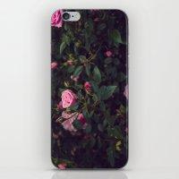 Sweet Summertime III iPhone & iPod Skin