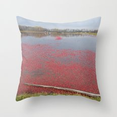 Cranberries Waiting To Be Rounded Up Throw Pillow