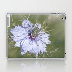 Love-in-a-Mist Laptop & iPad Skin