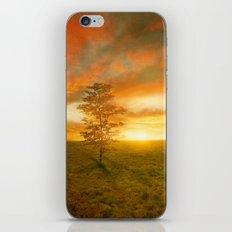 Sunset I C. VII iPhone & iPod Skin