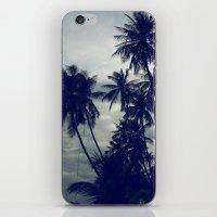 Palm Trees II iPhone & iPod Skin