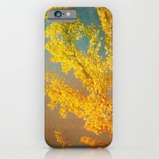 Yellow Ginkgo Tree in Autumn Slim Case iPhone 6s