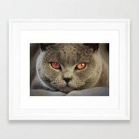 Tomcat Diesel Framed Art Print