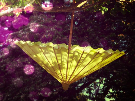 Happy Parasol -- It's Spring Art Print