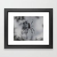 Spydey Framed Art Print