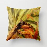 Butterfly on Crosmosia Throw Pillow