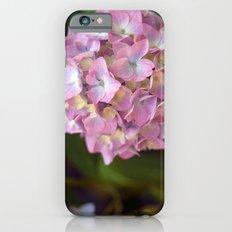 Hydrangea II iPhone 6 Slim Case