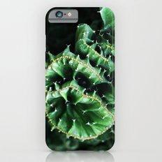 Emerald green Cactus Botanical Photography, Nature, Macro, iPhone 6 Slim Case